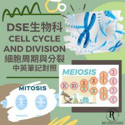 網上補習 Dse Biology 補習 Cell cycle and division 細胞週期與分裂