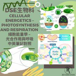 網上補習 Dse Biology 補習 Cellular Energetics - photosynthesis and respiration 細胞能量學 - 光合作用與呼吸作用