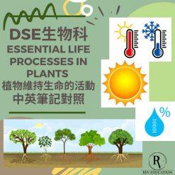 網上補習 Dse Biology 補習 Essential Life Processes in plants 植物維持生命的活動