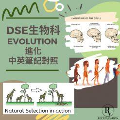 網上補習 Dse Biology 補習 Evolution 進化