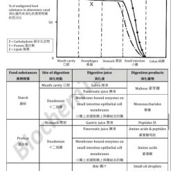 HKDSE Biology Food and Nutrition in humans 人類的食物和營養