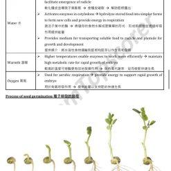 HKDSE Biology Growth and Development 生長與發育