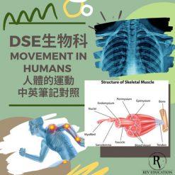網上補習 Dse Biology 補習 Movement in humans 人體的運動