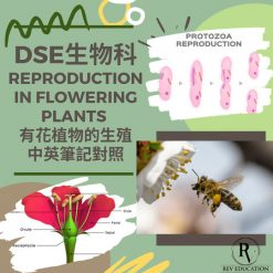 網上補習 Dse Biology 補習 Reproduction in flowering plants 有花植物的生殖