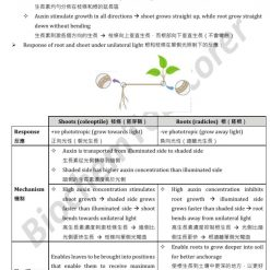 HKDSE Biology Stimuli, receptors and responses 刺激,感受器與反應