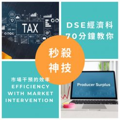 網上補習 Dse Econ 補習 市場干預的效率 Efficiency with market intervention